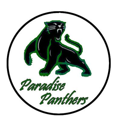 400x400 Cool Panther Clip Art Carolina