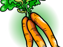 220x165 Free Carrot Clipart Carrot Clip Art Carrot Image Plant Clipart