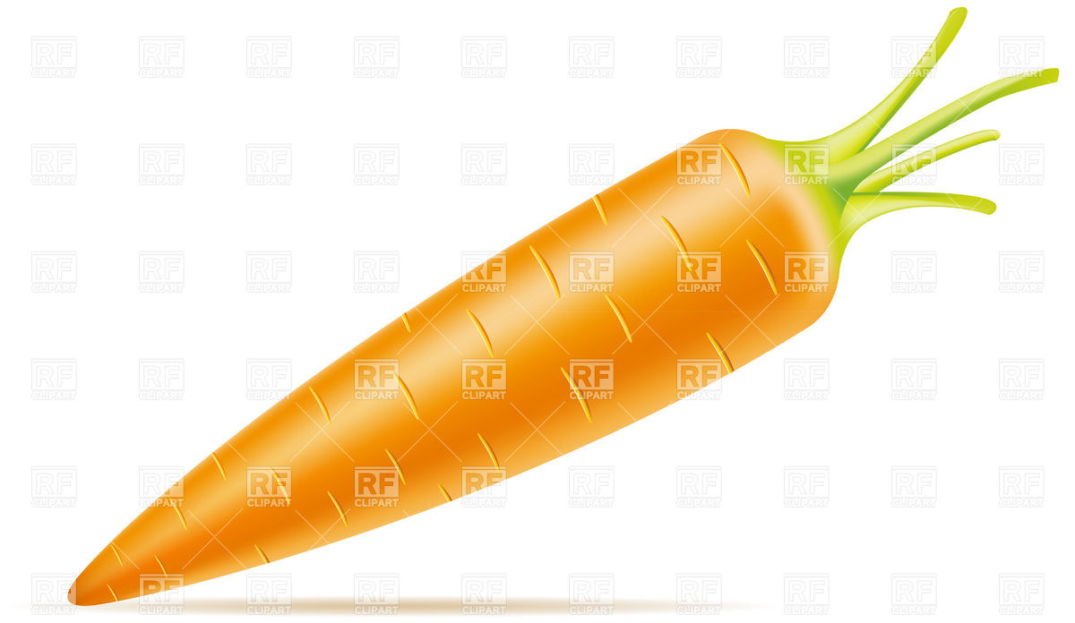 1200x696 Carrot Royalty Free Vector Clip Art Image