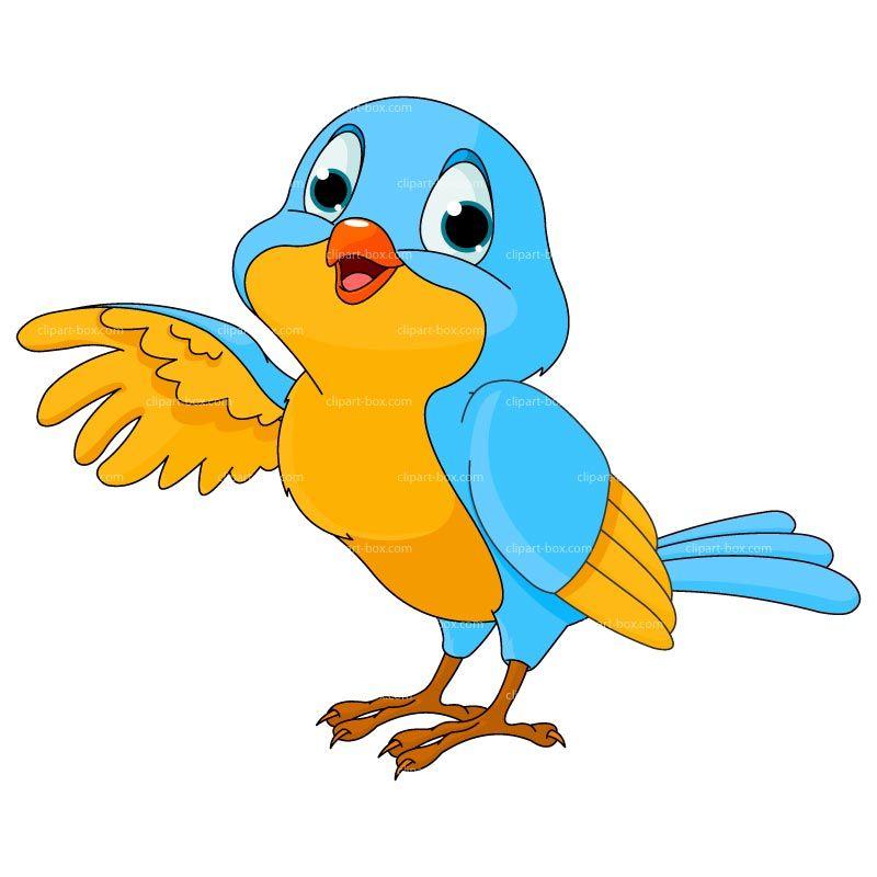 800x800 Bird Clipart Clipart Bird Cartoon Royalty Free Vector Design
