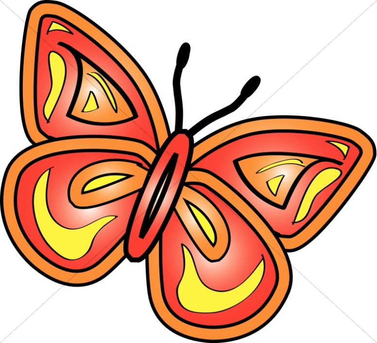 776x706 Graphic Butterfly Group