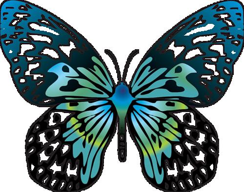 500x394 Images Of Cartoon Butterflies