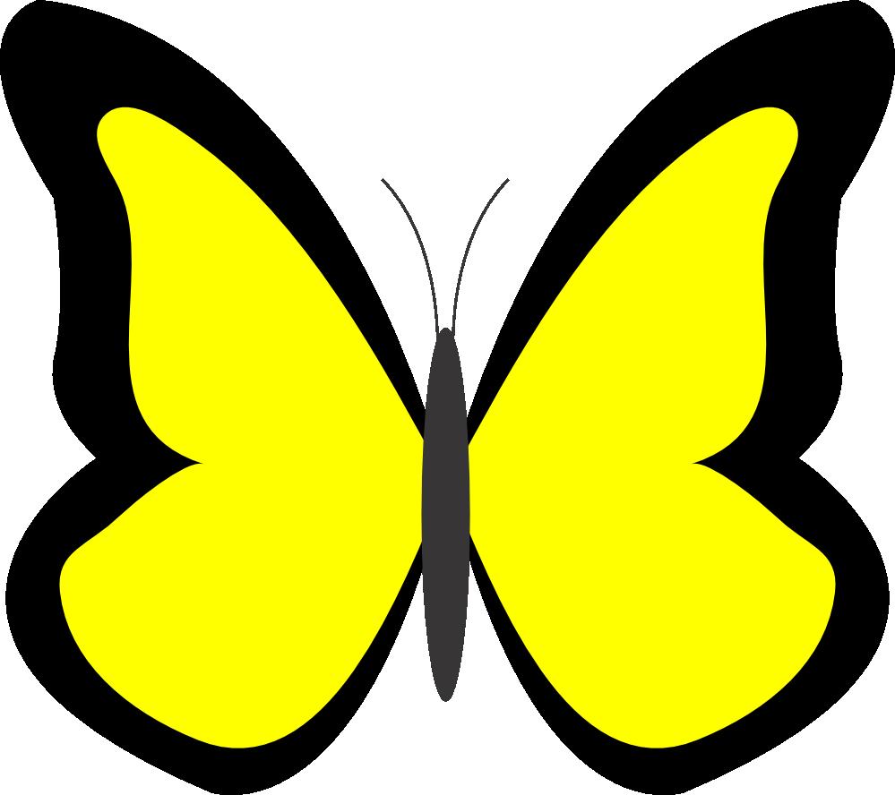 999x888 Butterflies Cartoon Butterfly Clipart 5