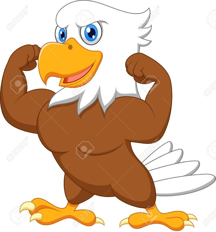 736x792 7 Best Images On Eagle Cartoon, Eagles And Get