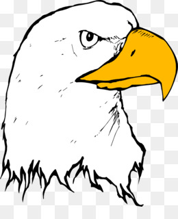 260x320 Bald Eagle Beak Clip Art