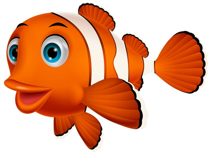 736x532 Fish Tank Clipart Animated Fish