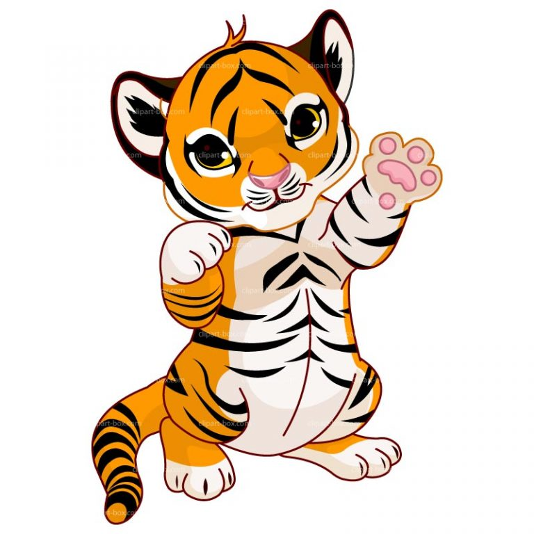 768x768 Tiger Cartoon Clipart Standing Baby Tiger Clipart