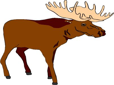 400x300 Moose Clipart Clipartaz Free Clipart Collection