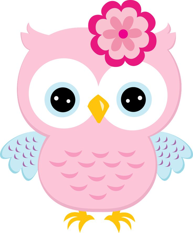 cartoon owl clipart at getdrawings com free for personal use rh getdrawings com cute baby owl clipart pink baby owl clipart