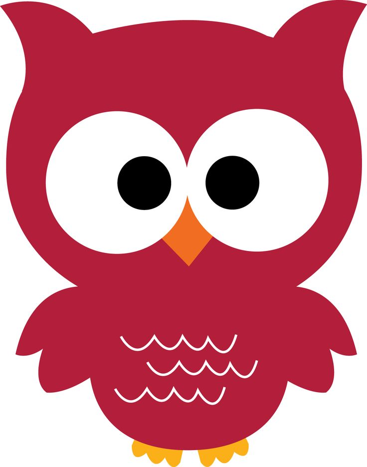 736x936 16 Best Owls! Images On Owls, Cartoon Owls And Owl