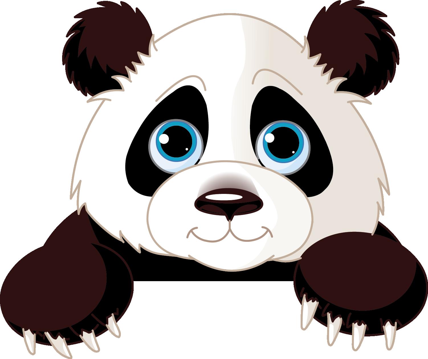 1502x1259 Giant Panda Free Content Clip Art