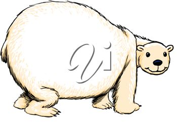 350x243 Picture Of Chubby Cartoon Polar Bear On White Background In