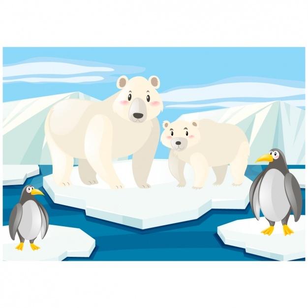 626x626 Polar Bear Vectors, Photos And Psd Files Free Download