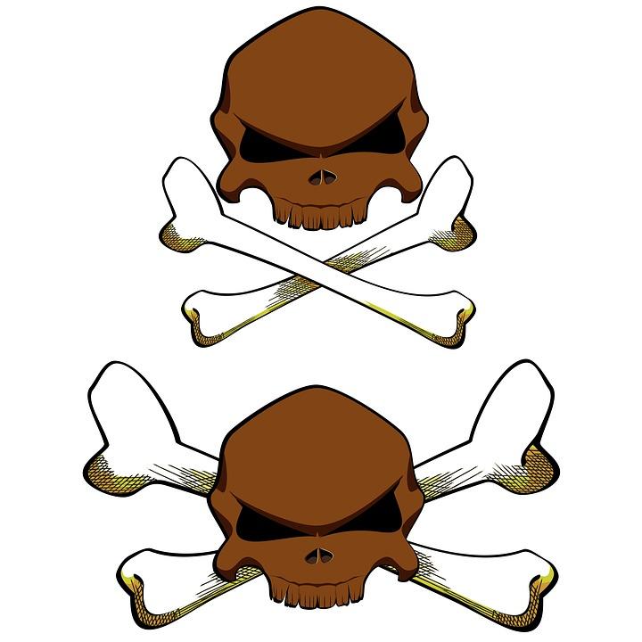 720x720 Cartoon Skeleton