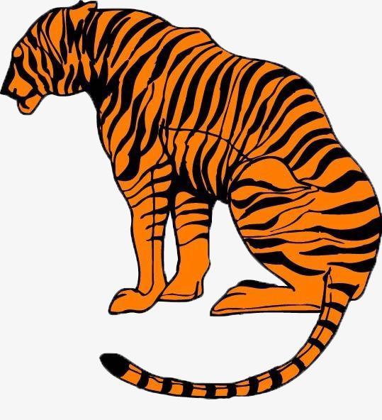 539x592 Vector Cartoon Tiger, Tiger, Animal, Cartoon Png Image And Clipart