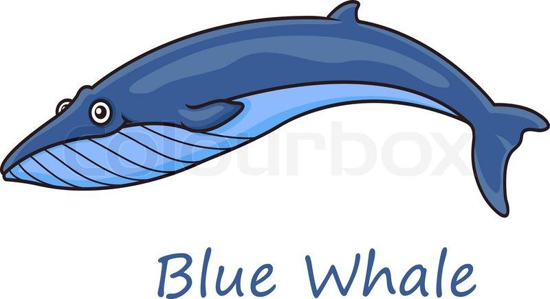 800x436 Funny Cute Cartoon Blue Whale Isolated On White Background