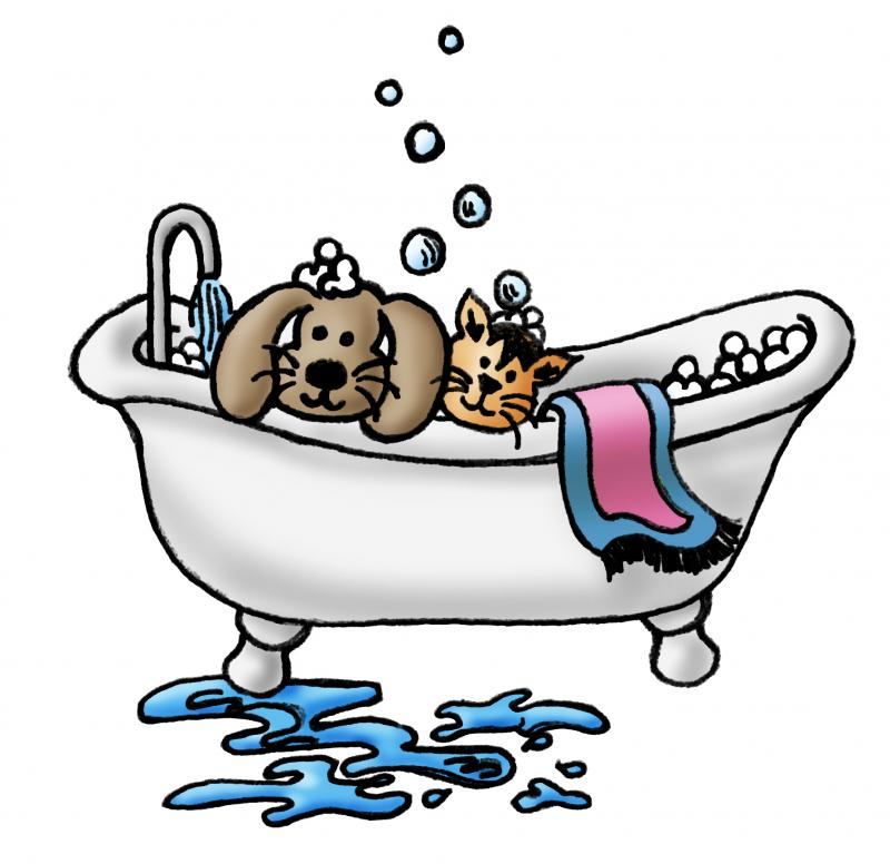 800x776 Funny Dog Grooming Clipart