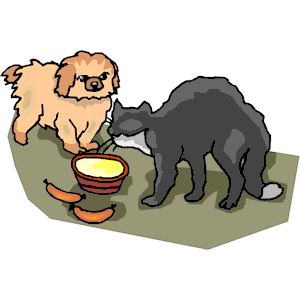 300x300 Cat Dog Eating Clipart, Cliparts Of Cat Dog Eating Free Download