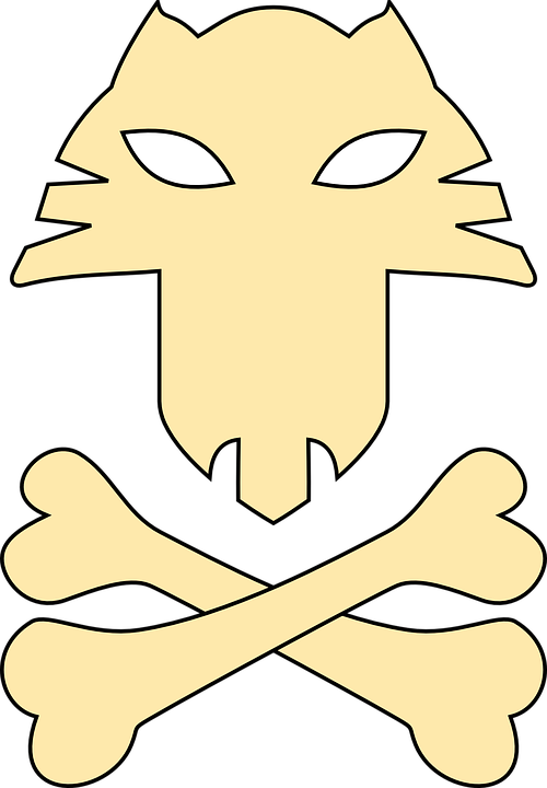500x720 Pirate Cat Head Clipart Collection