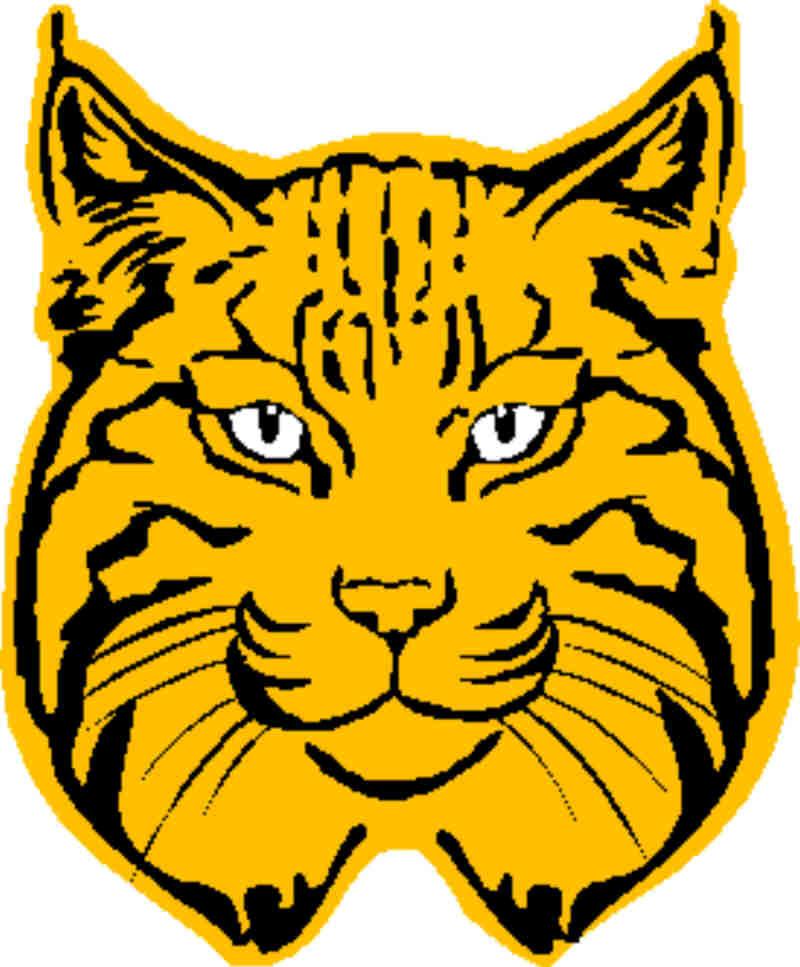 800x967 Bobcat Clipart Clipartlook