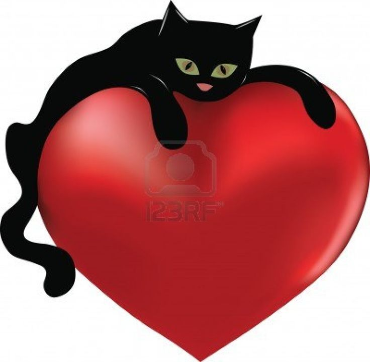 736x721 154 Best 32. Cats Amp Valentine's Day Images On Cat