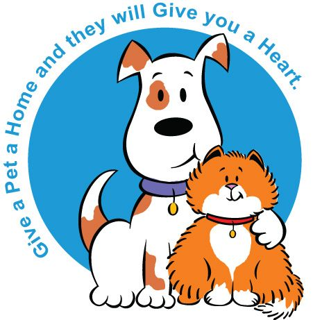 The best free Shelter clipart images  Download from 19 free cliparts