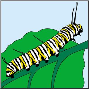304x304 Clip Art Butterfly Monarch Caterpillar Color I