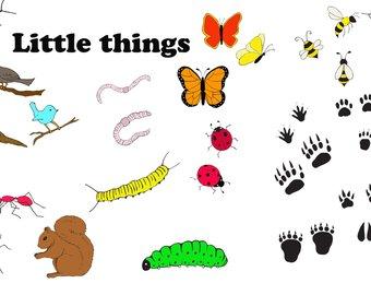 340x270 Kid Bugs Clipart Kid Bugs Clip Art Kid Bugs Png Snail