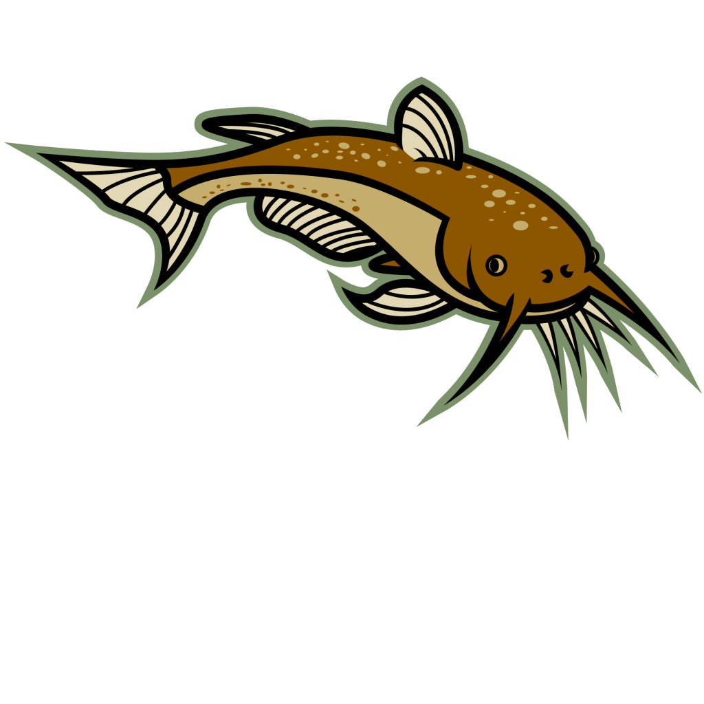 1024x1024 Image Of Catfish Clipart