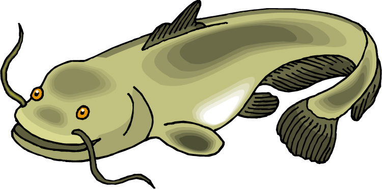 750x372 Catfish Clipart Catfish 20clipart Clipart Panda Free Clipart