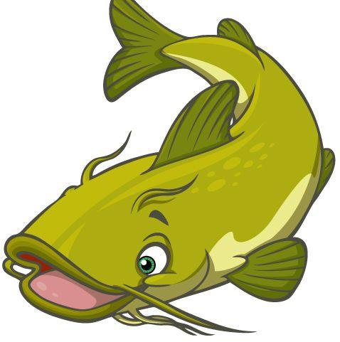 478x481 Catfish Clipart Catfish Clipart Cliparts Co Vizi Lvilgwater