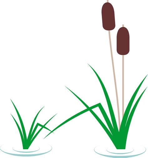 474x508 Cattail Cliparts Free Download Clip Art