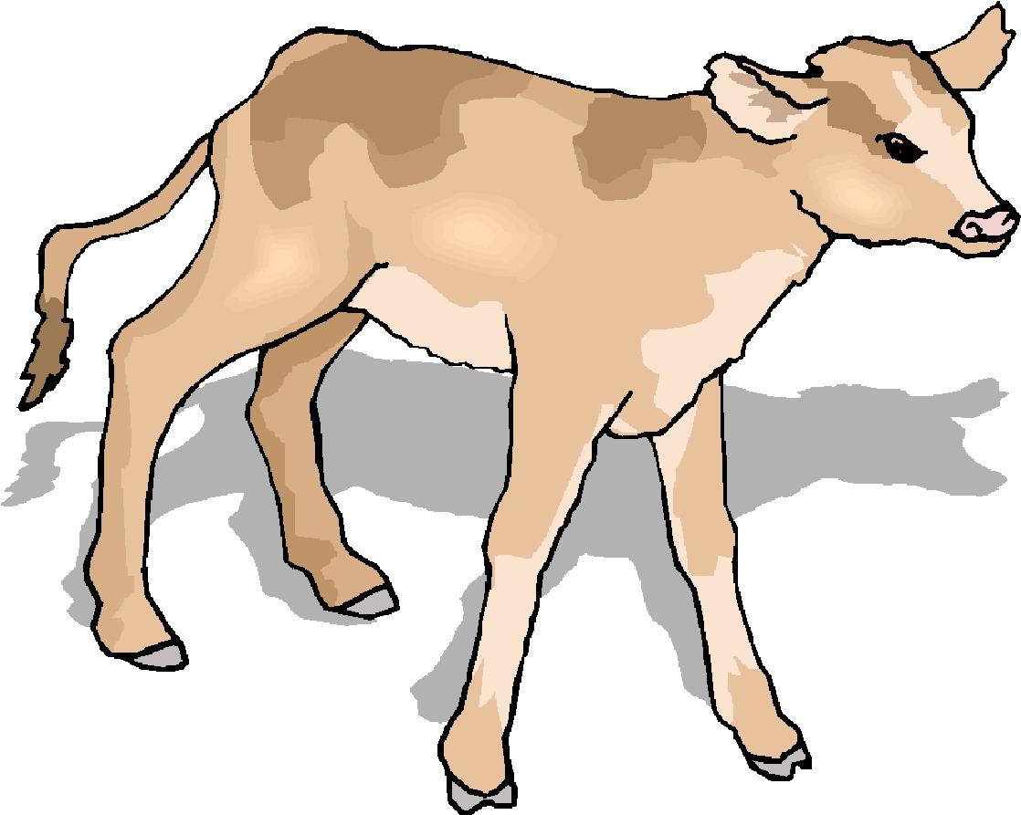 1118x893 Clip Art Clip Art Of Cow