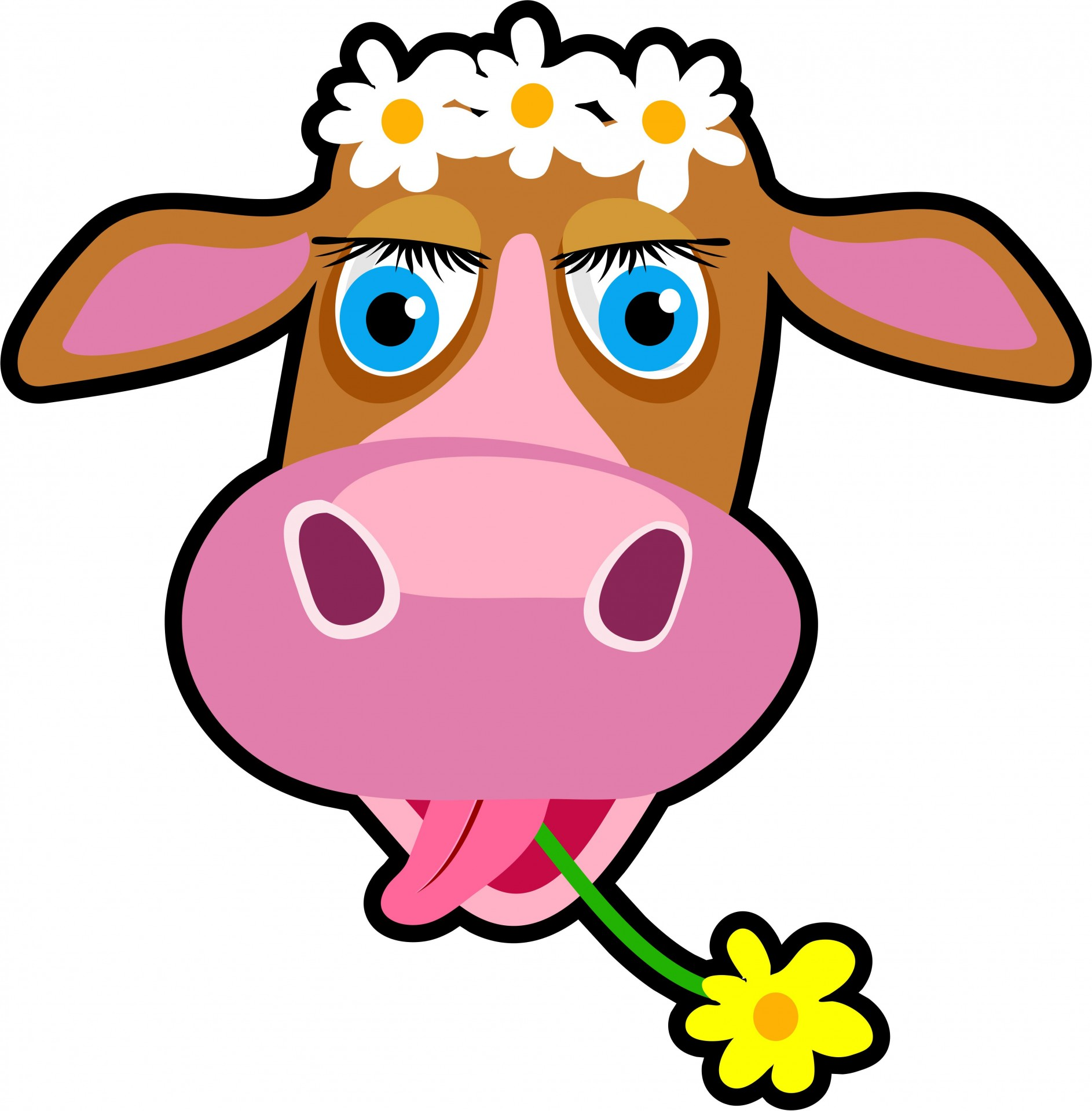 1886x1920 Cow Clipart Transparent Background Pencil And In Color Cow