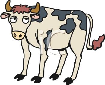 350x284 Inspirational Cattle Clipart