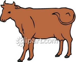 Cattle Drive Clipart
