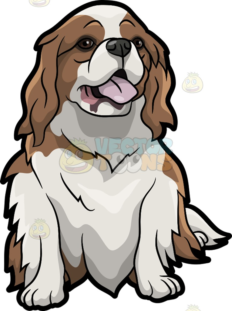 765x1024 A Curious Cavalier King Charles Spaniel Pet Dog Cartoon Clipart