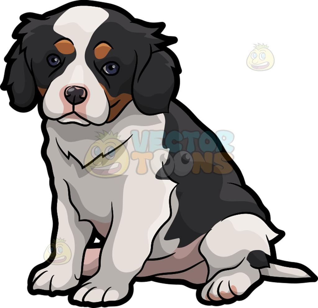 1024x990 A Cavalier King Charles Spaniel Pet Dog Cartoon Clipart Vector Toons