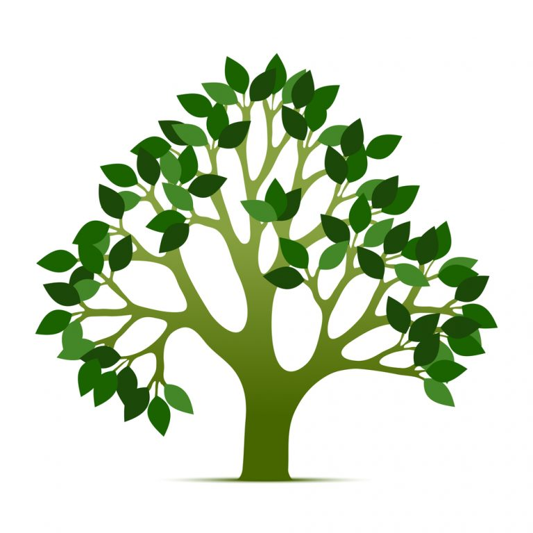 768x768 Pretentious Tree Of Life Clip Art Free Vector Download