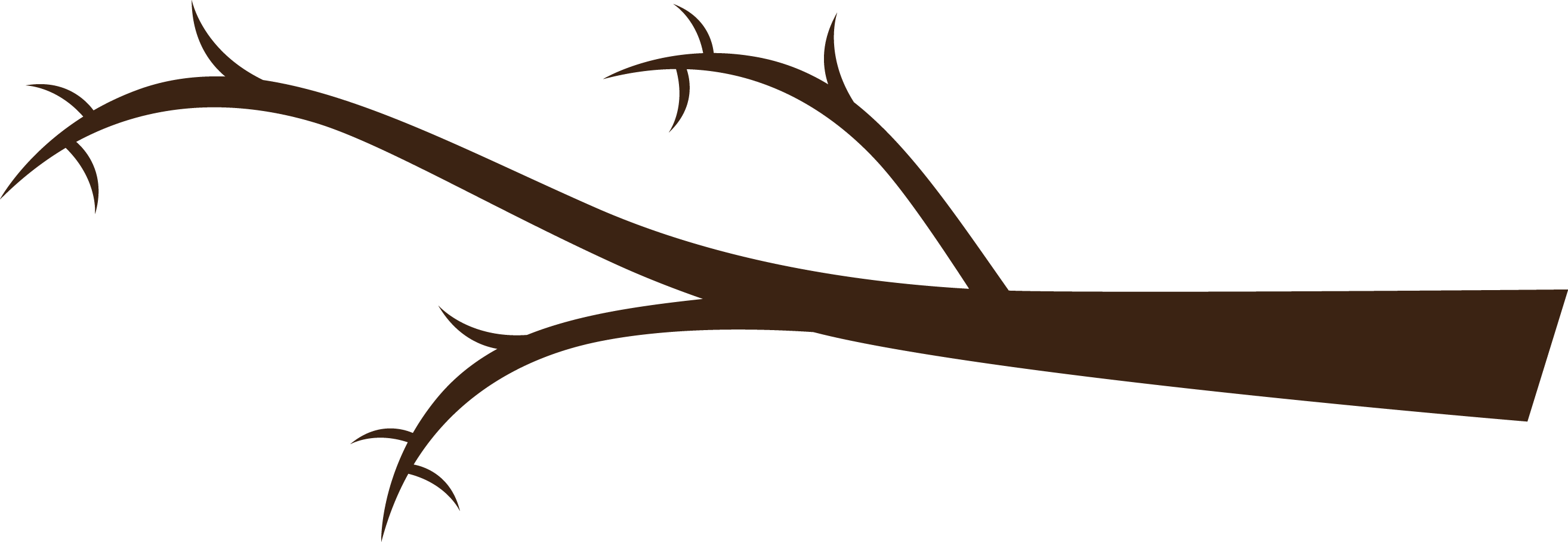 2628x908 Branch Clipart Tree