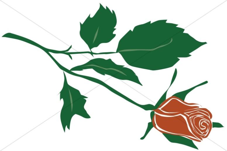 776x517 Romantic Red Rose Church Rose Clipart