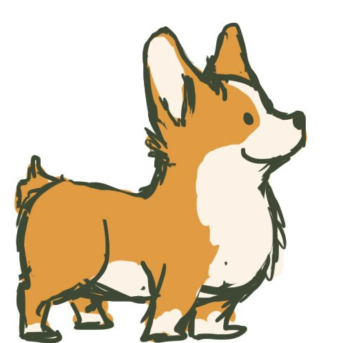 498x498 Drawn Corgi Easy