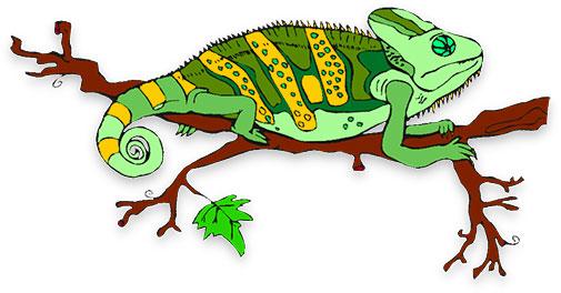 505x264 Chameleon Clip Art