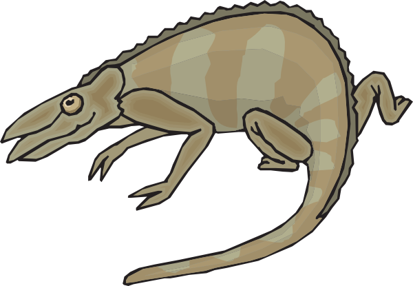 600x415 Brown And Gray Chameleon Clip Art