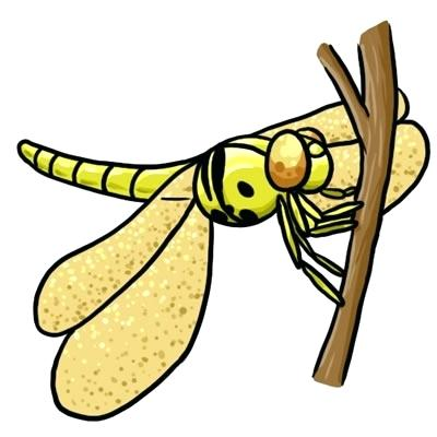 400x400 Free Art Clip Art Free Dragonfly Clip Art Free Clipart Images
