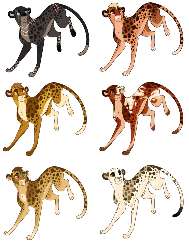789x1013 Price Cut Cheetah Adopts (06) Closed By Agent Taai