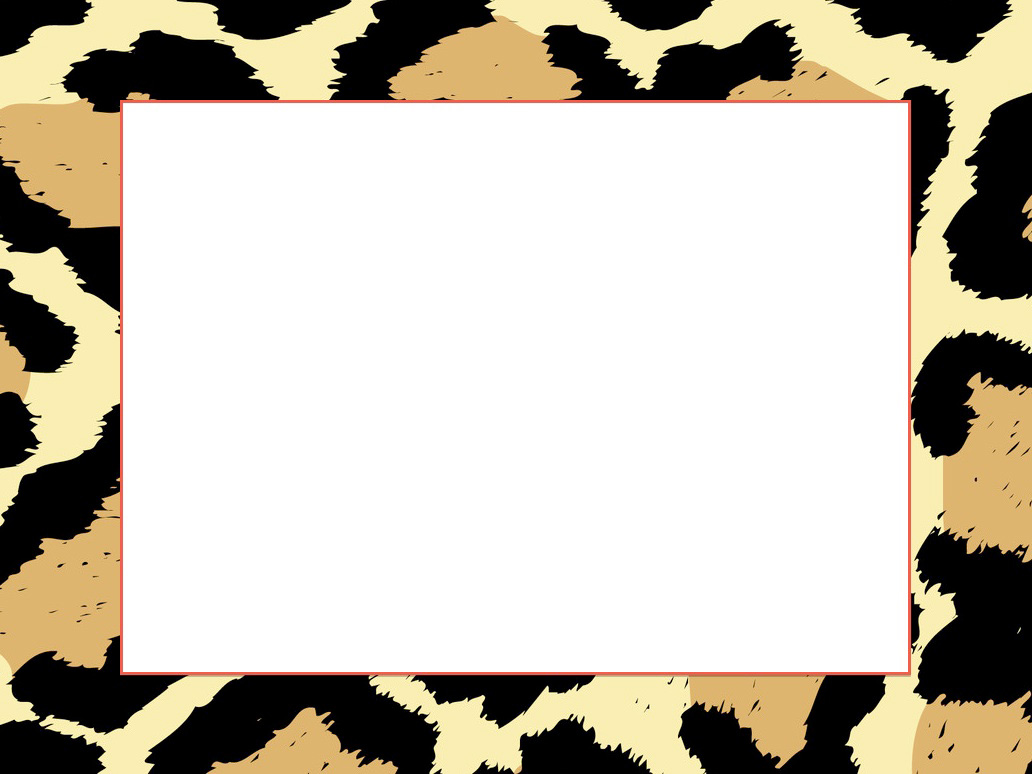 1032x774 Cheetah Print Picture Frame Hd Pictures