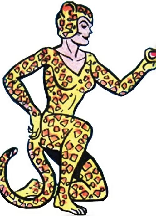 500x690 Cheetah