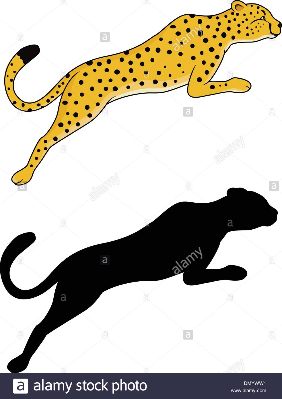 983x1390 Cheetah Jumping Stock Photos Amp Cheetah Jumping Stock Images