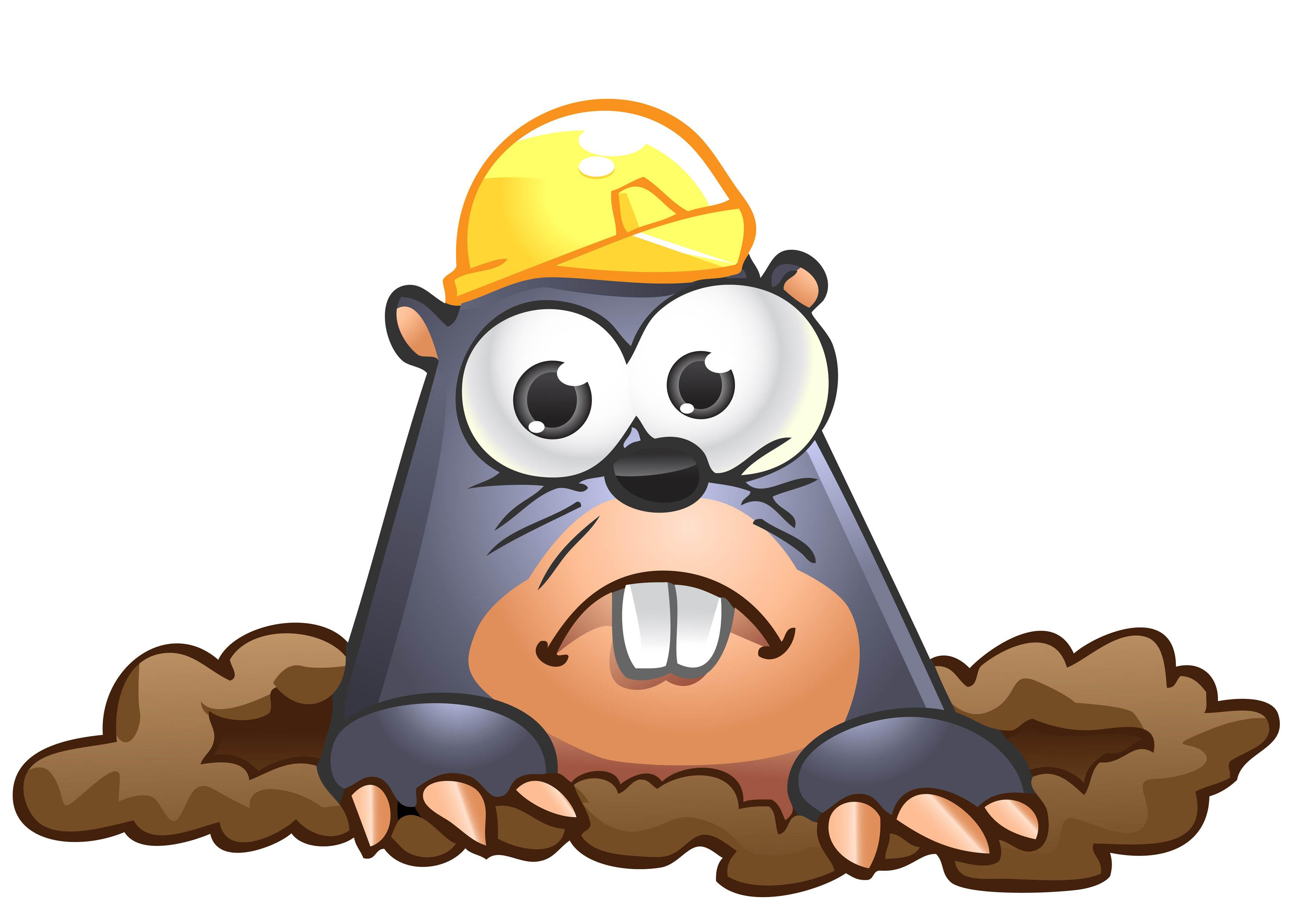 3508x2480 Top 96 Mole Clip Art
